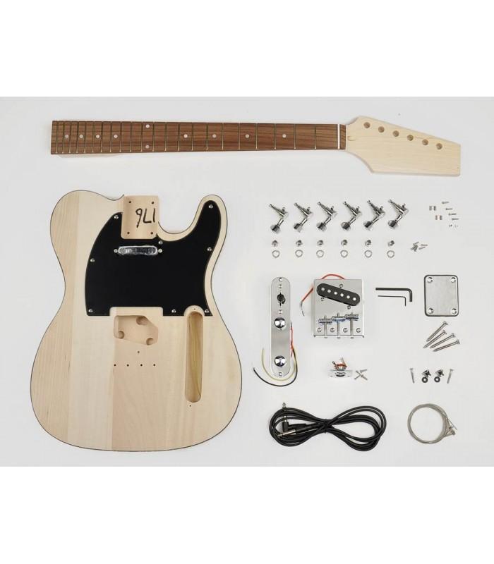 Boston guitar kit TE-10