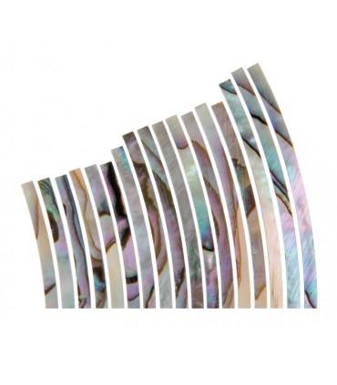 Abalone rozet 3.2mm