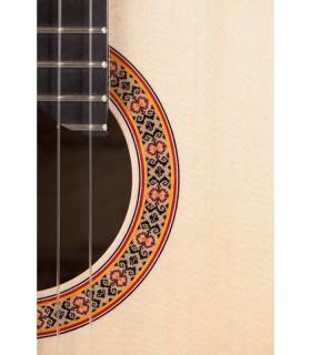 Gitarrenbaukurs 2,5 Stunden